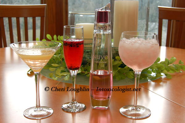 NUVO Sparkling Liqueur Tasting - photo copyright Cheri Loughlin