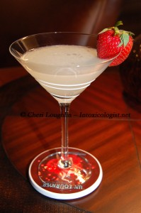 Dragon Berry Daiquiri - created by Cheri Loughlin - photo copyright Cheri Loughlin