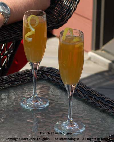French 75 on the Deck - Classic Cocktail adapted by Cheri Loughlin - photo property of Cheri Loughlin