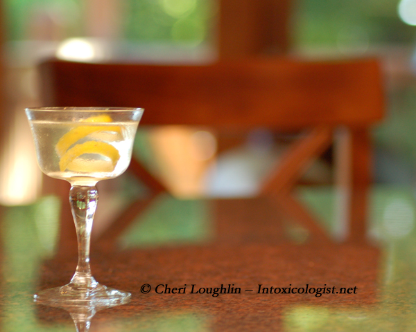 Martini - photo copyright Cheri Loughlin