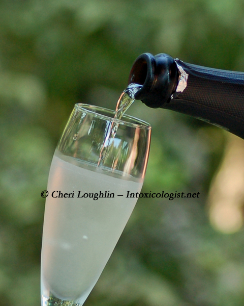 Champagne Cocktail photo property Cheri Loughlin