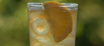 Bourbon Sling is a refreshing bourbon long drink with Bourbon, Southern Comfort, Lemon Juice, Club Soda and Lemon Wedge Garnish. - photo by Cheri Loughlin, The Intoxicologist