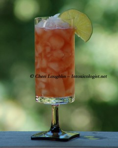 Jack Daniels Black Raspberry Margarita - Pink Drink - photo copyright Cheri Loughlin