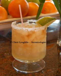 Burgundy and Gold Margarita - photo copyright Cheri Loughlin