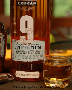 Cruzan 9 Spiced Rum Neat - photo property of Cheri Loughlin - The Intoxicologist
