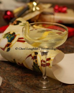 Holiday Martini photo copyright Cheri Loughlin