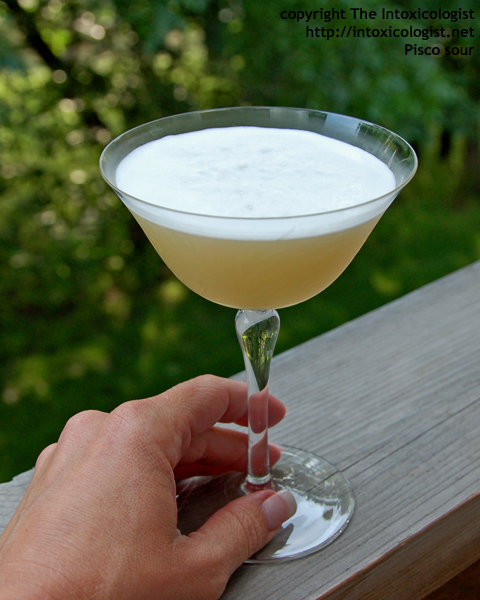 Pisco Sour - photo copyright Cheri Loughlin