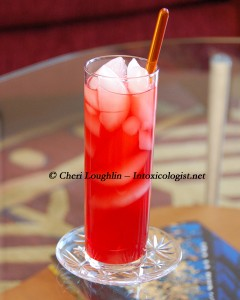 Sloe Gin Fizz photo copyright Cheri Loughlin