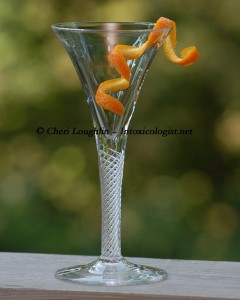 Orange Twist Garnish photo copyright Cheri Loughlin