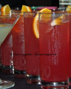 Punch Cocktails - photo copyright Cheri Loughlin