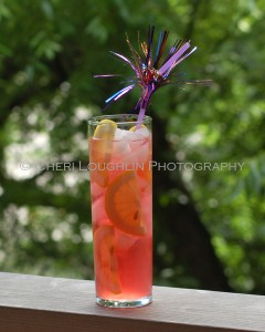 Mango Cran-Cooler created by Cheri Loughlin - photo copyright Cheri Loughlin