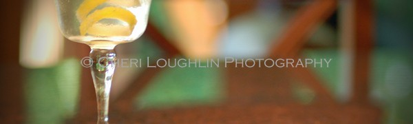 Classic Martini 1 - photo copyright Cheri Loughlin