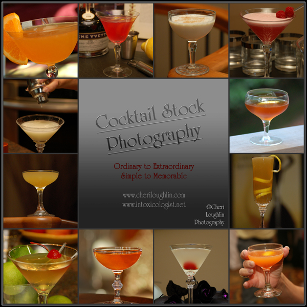 Cocktail Stock Photography Gin Classics - photo copyright Cheri Loughlin