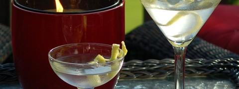 Two Martinis Outdoors 4 photo copyright Cheri Loughlin