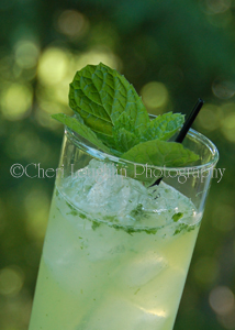 Ultimate Mojito 9 - photo copyrigh