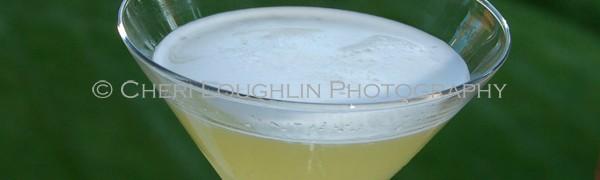VGPineapple Mango 3 - photo copyright Cheri Loughlin - Cocktail Stock Photography www.cheriloughlin.com