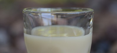 Peanut Butter Cup 158 photo copyright Cheri Loughlin