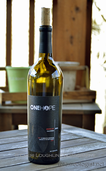 ONEHOPE Wine California Merlot 006