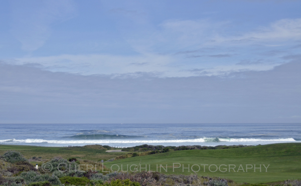 Pebble Beach 043