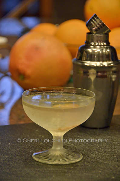 Beefeater 24 Martini ingredient include Beefeater 24 Gin, Lillet Blanc and Orange Bitters - photo by Cheri Loughlin, The Intoxicologist