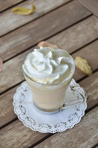 Pumpkin Pie White Hot Chocolate is also wonderful with vanilla whipped cream. Whip 1 cup whipping cream with 1/2 teaspoon vanilla extract and 3 tablespoons powdered sugar. Or use whipped cream dispenser using 1 pint heavy whipping cream and 2 tablespoons french vanilla syrup found with coffee syrups. {recipe and photo credit: Mixologist Cheri Loughlin, The Intoxicologist. www.intoxicologist.net}
