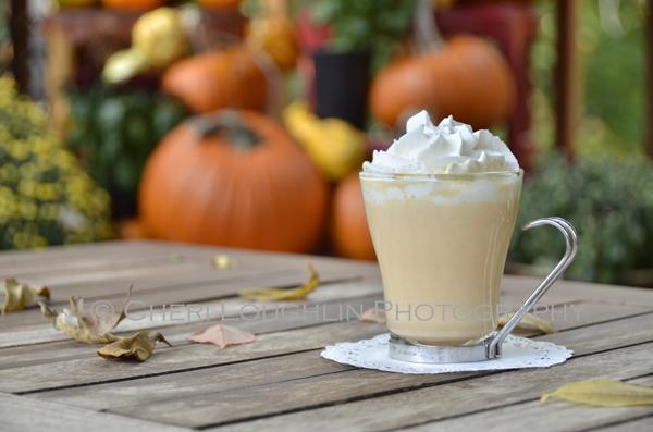Pumpkin Pie White Hot Chocolate | RumChata Drink | The Intoxicologist