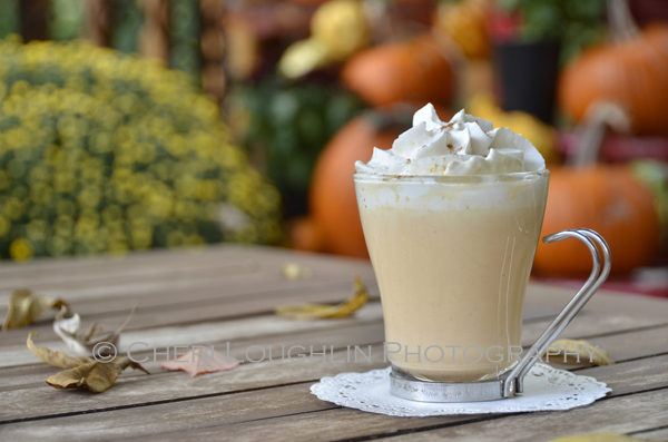 Pumpkin Pie White Hot Chocolate uses white chocolate chips, heavy whipping cream, half & half, RumChata, pumpkin, pumpkin pie spice and whipped cream. Make it for adults or change it up a little for those wishing for non-alcoholic enjoyment. This makes a great tailgate recipe or relaxing fireside sipper. {recipe and photo credit: Mixologist Cheri Loughlin, The Intoxicologist. www.intoxicologist.net}